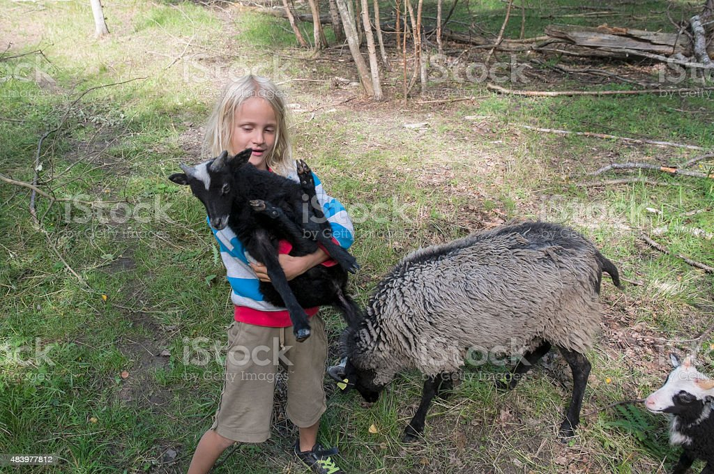 Little blond boy with black lamb in his arms. stock photo