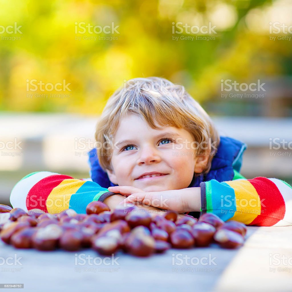 little blond kid playing with chestnuts in autumn park. stock photo
