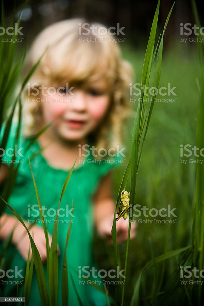Little blonde haired girl playing in tall green grass royalty-free stock photo