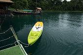 Little boat on green water