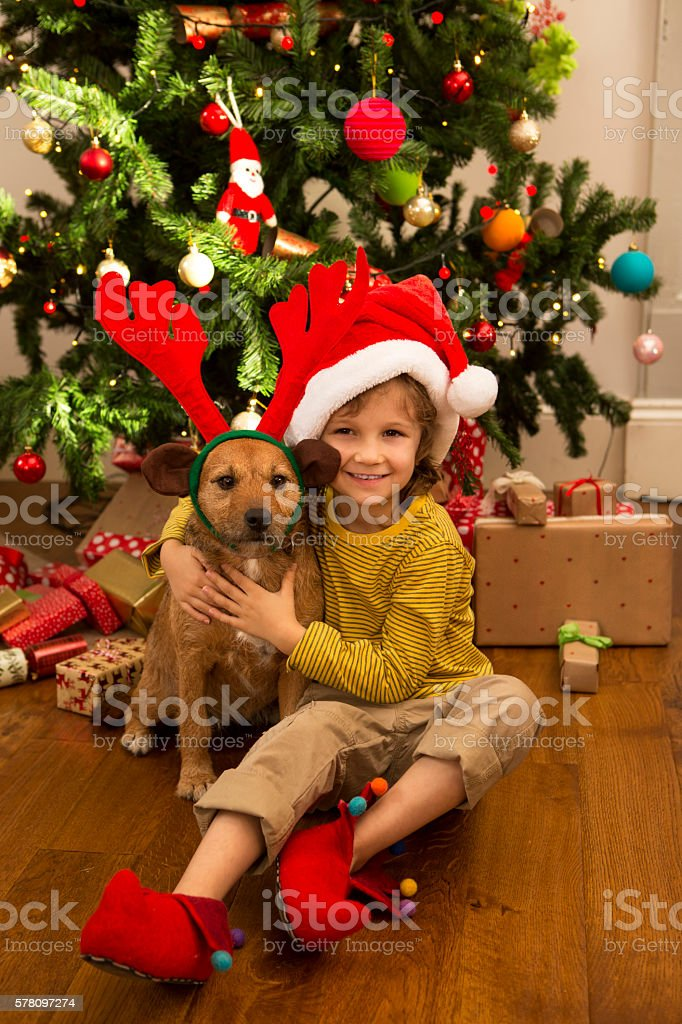Little Boy And His Dog At Christmas stock photo