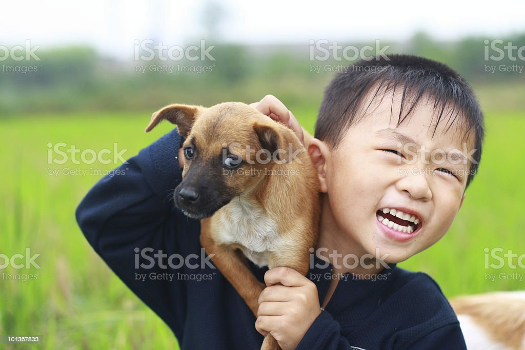 little boy and his dog stock photo