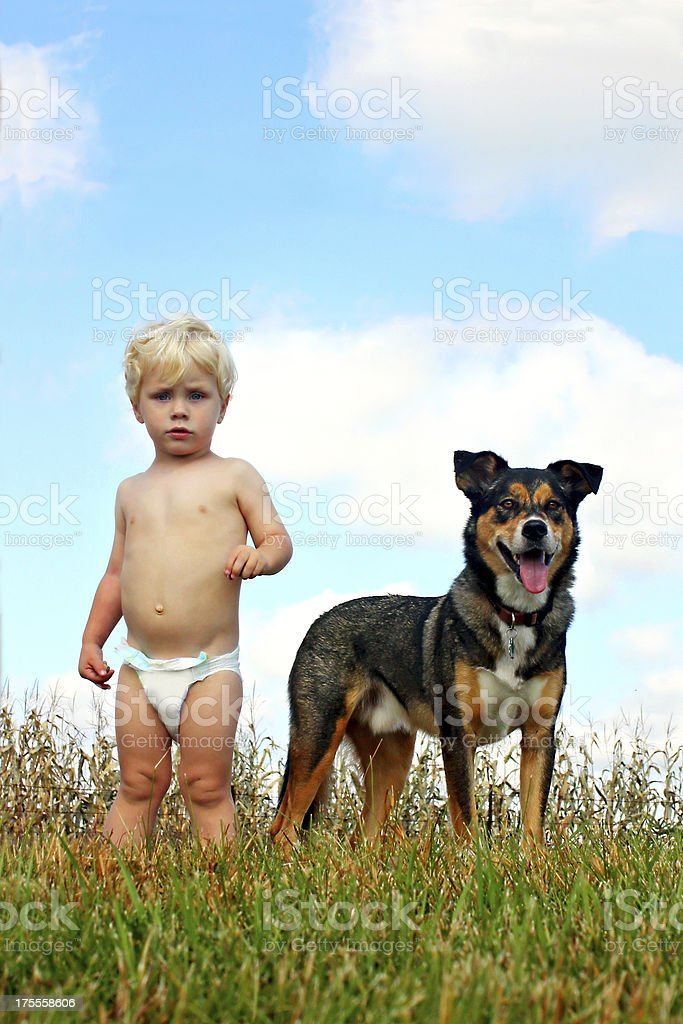Little Boy and His Dog royalty-free stock photo