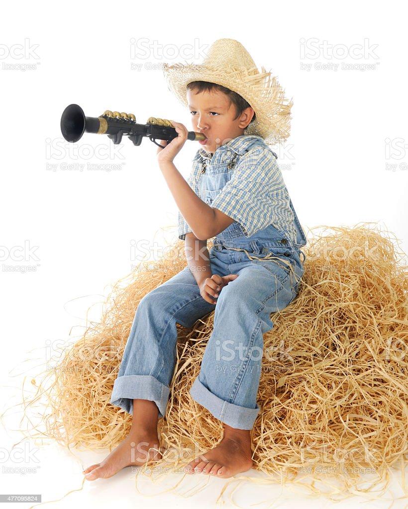 Little Boy Blue stock photo