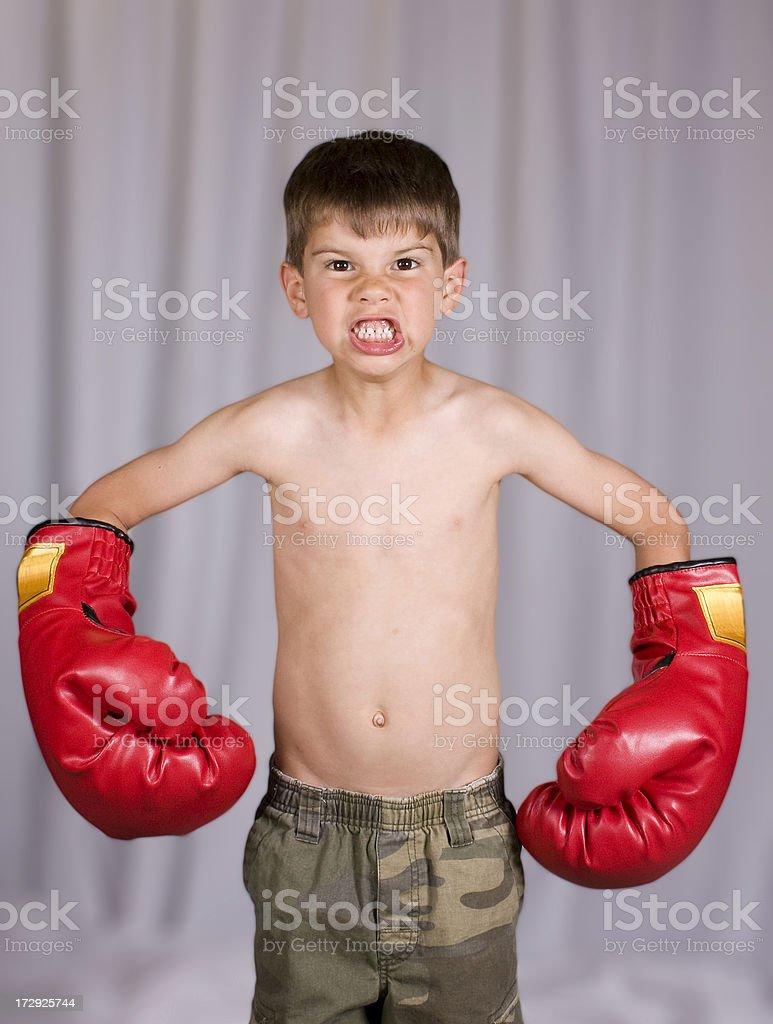 Little Boy Boxer royalty-free stock photo