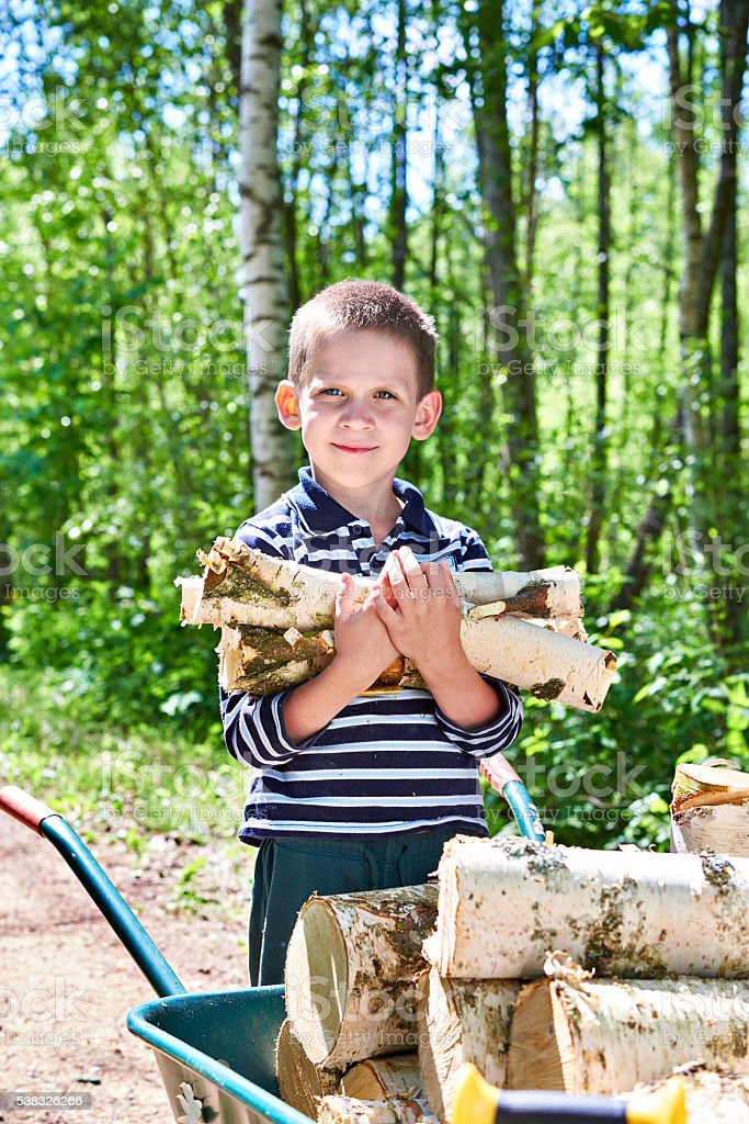 Little boy carries firewood from forest stock photo