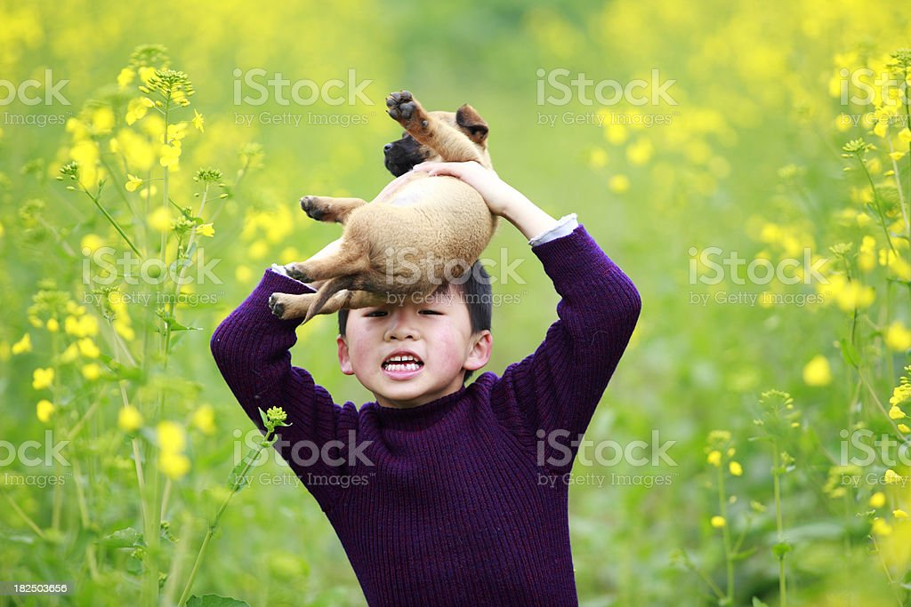little boy carry his dog stock photo