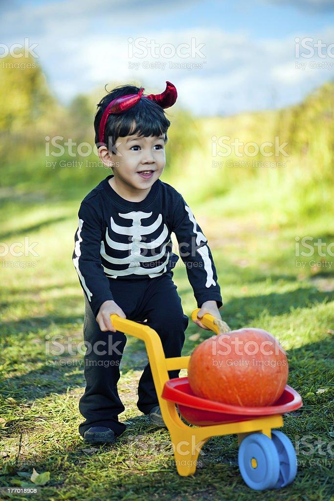 Little boy celebrating Halloween royalty-free stock photo