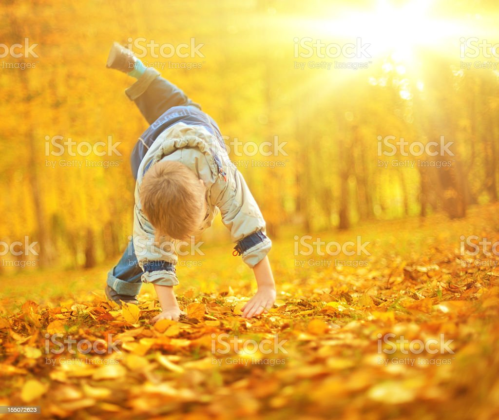 Little boy doing handstand in Autumn park royalty-free stock photo