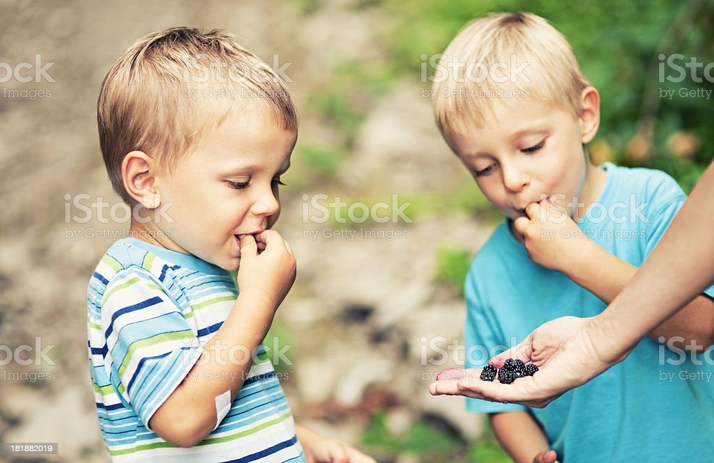 Little boy eating wild raspberries royalty-free stock photo