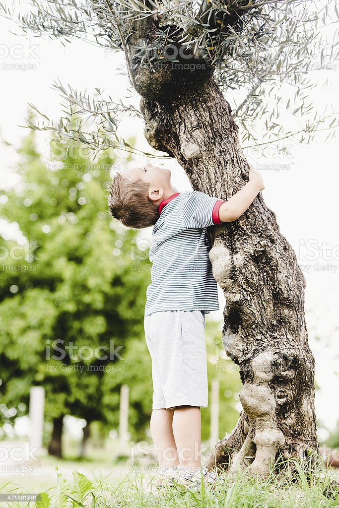 Little boy embrace a tree - care of nature royalty-free stock photo