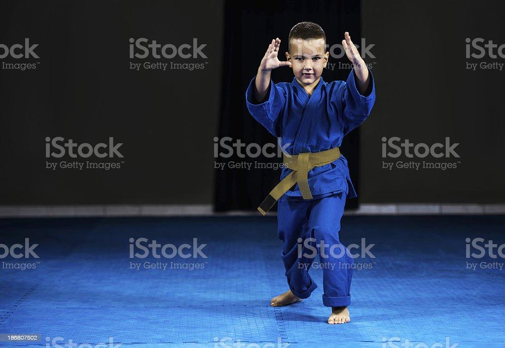 Little boy exercising aikido. stock photo