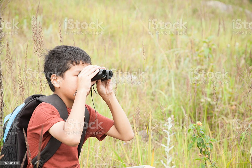 Little boy explores outdoors, nature using binoculars.  Meadow.  Summer. stock photo