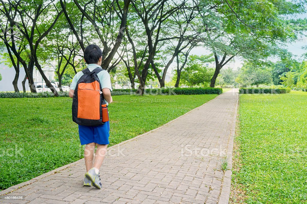 Little boy going to school stock photo
