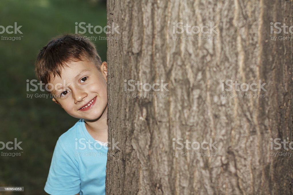 Little boy hide-and-seek royalty-free stock photo
