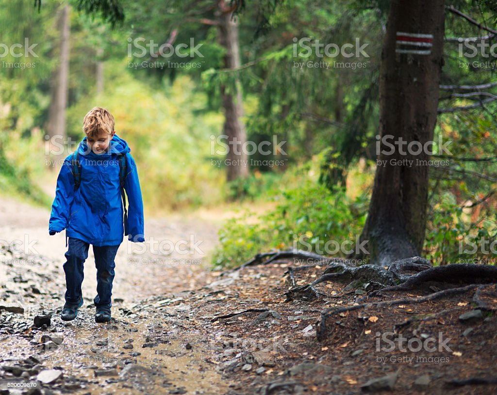 Little boy hiking in the forest after rain. stock photo