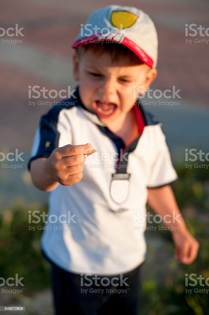 little boy holding a butterfly and shouts stock photo