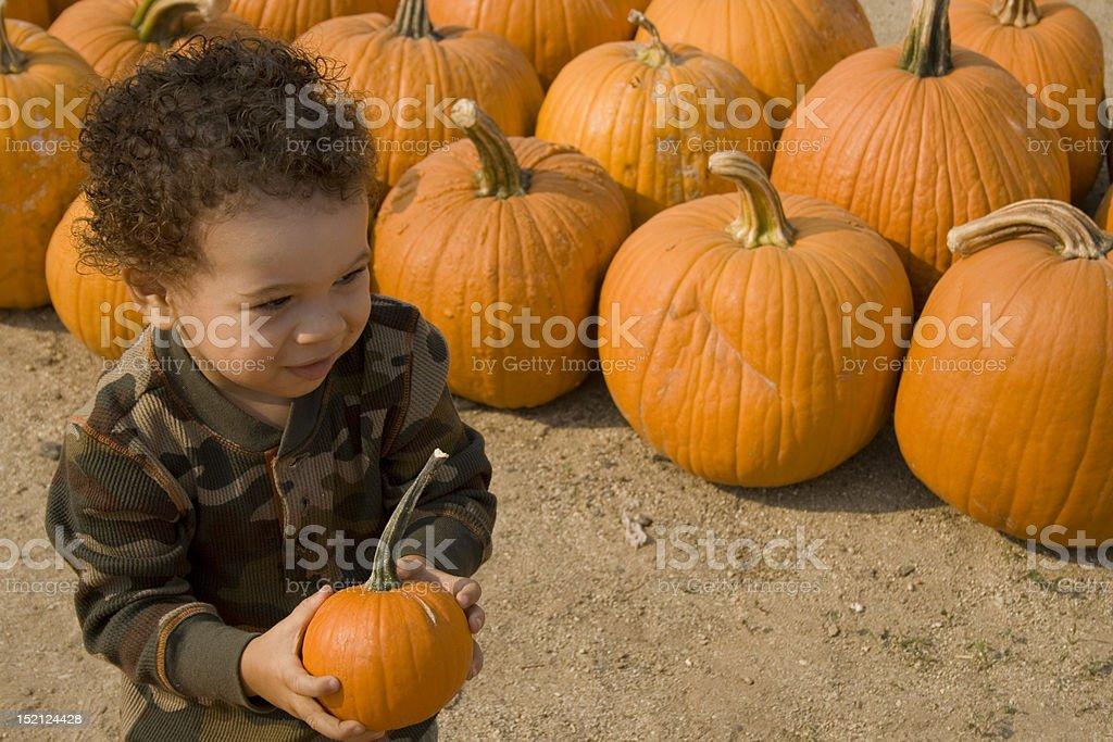 Little Boy Holding a Pumpkin stock photo