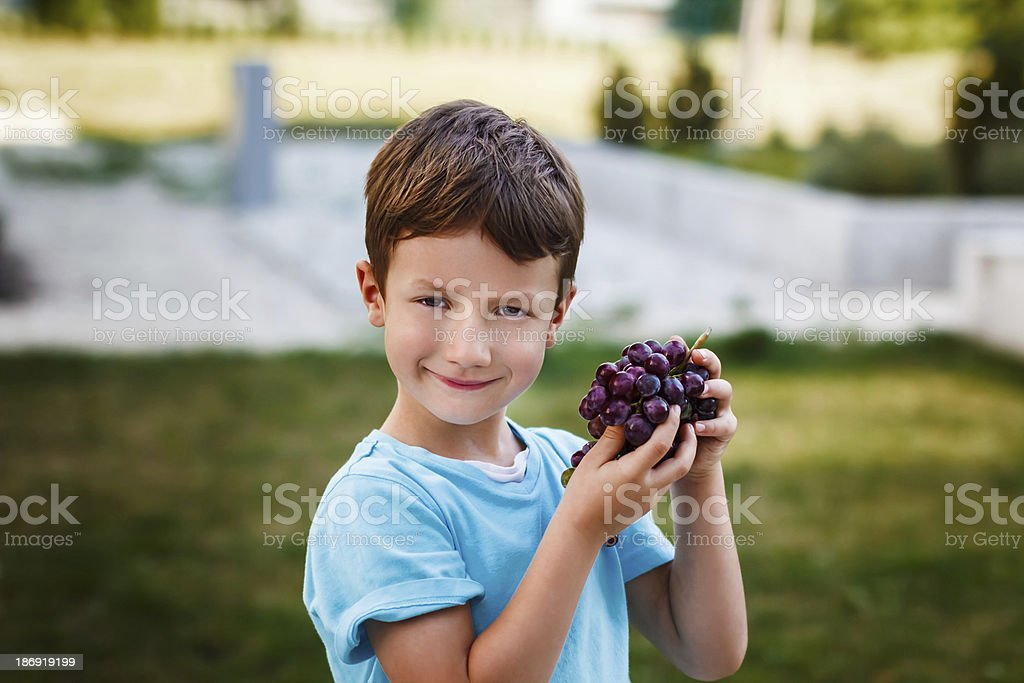 Little boy holding wine grapes royalty-free stock photo