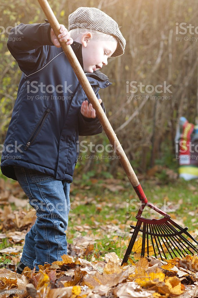 Little boy holds a large rake in the garden stock photo