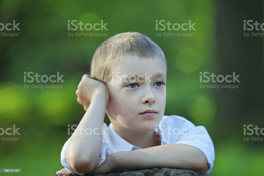 Little boy in the forest. royalty-free stock photo
