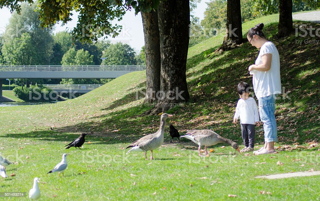 Little boy, mother and duck stock photo