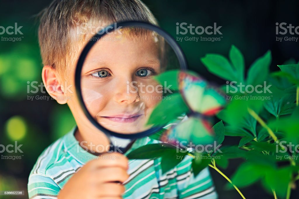 Little boy observing the mysteries of nature. stock photo