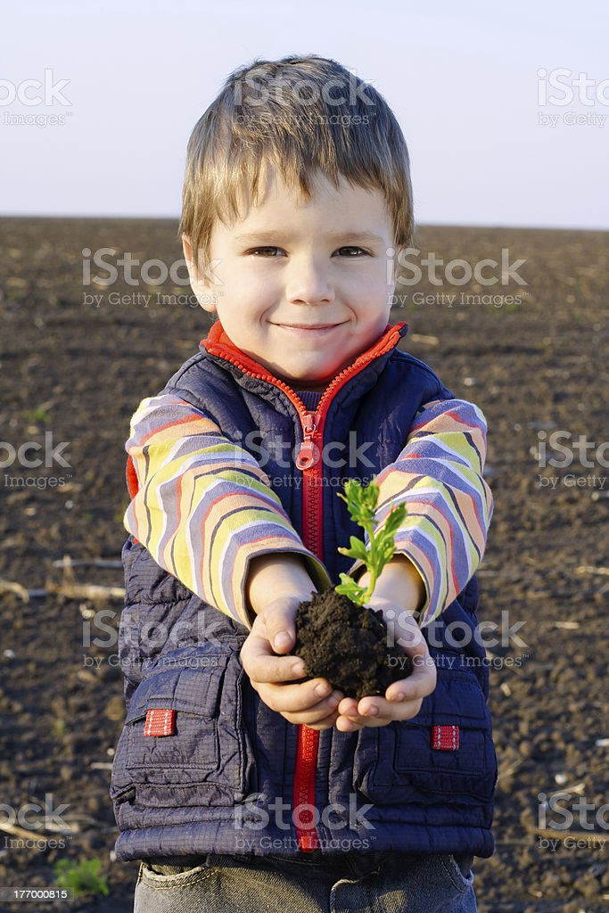 Little boy on field holding the plant royalty-free stock photo