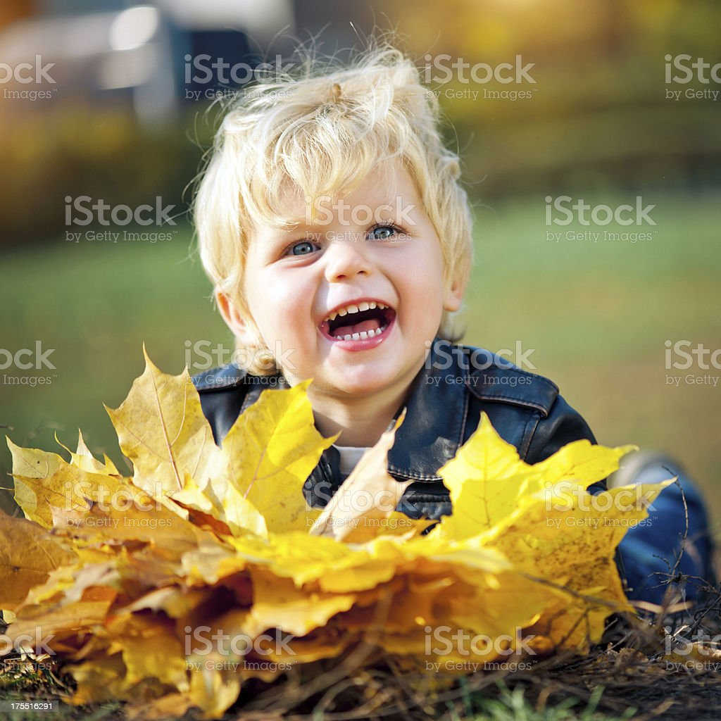 Little boy outdoors royalty-free stock photo