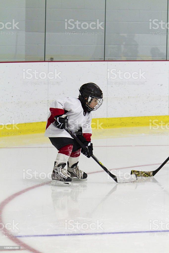 Little boy playing ice hockey royalty-free stock photo