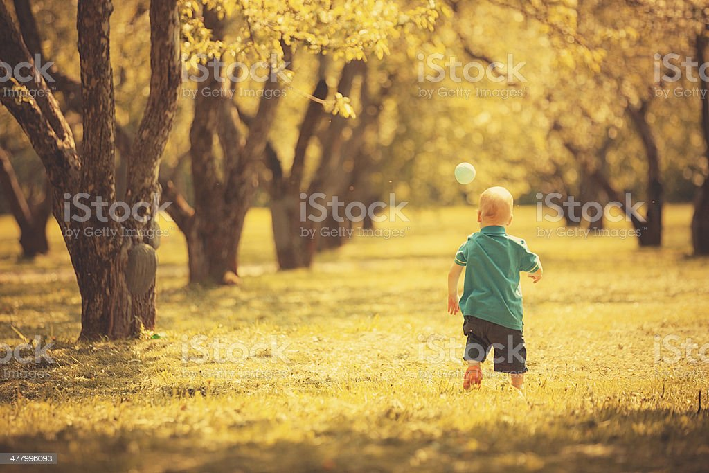 Little boy playing in park royalty-free stock photo