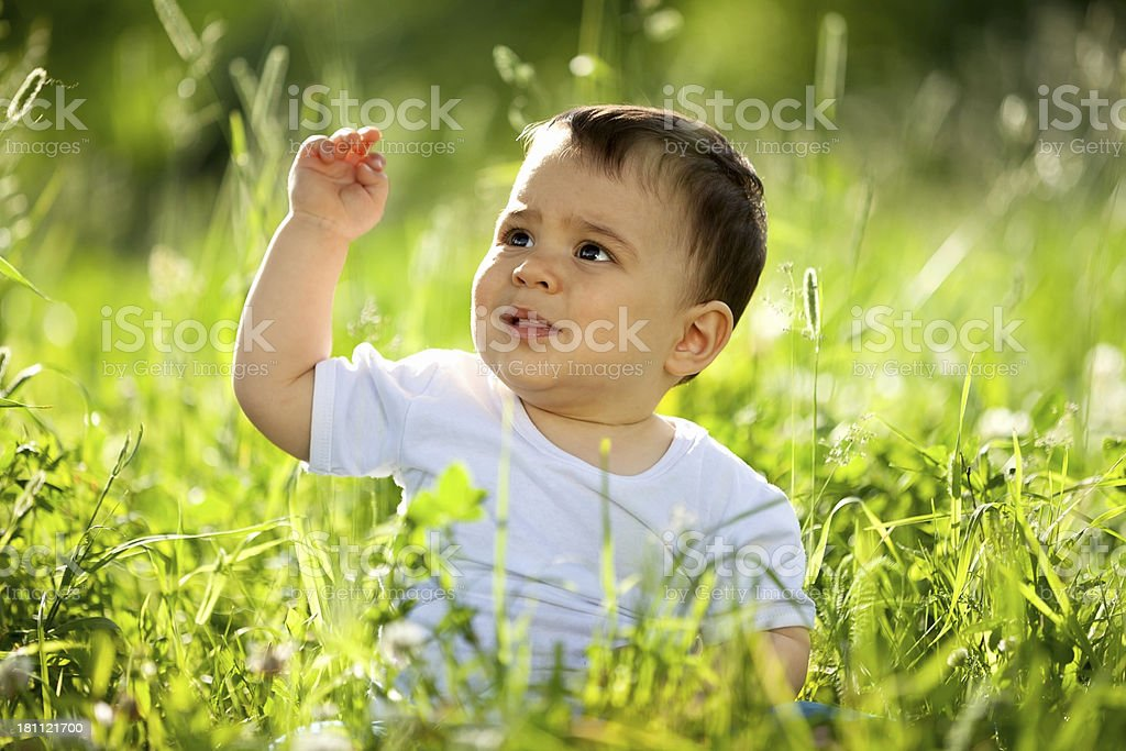 Little boy playing in the grass royalty-free stock photo