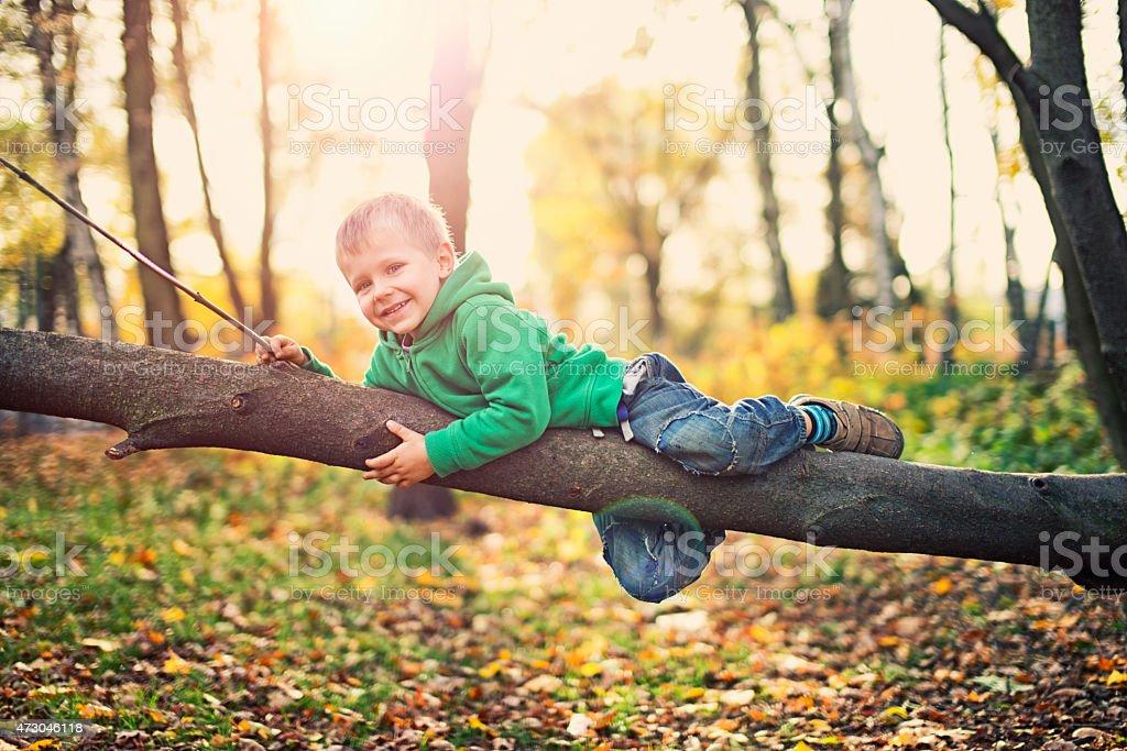 Little boy playing on tree stock photo