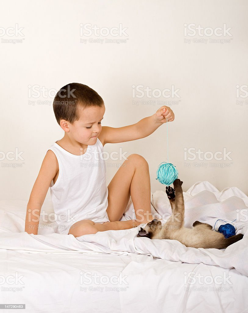 Little boy playing with kitten royalty-free stock photo