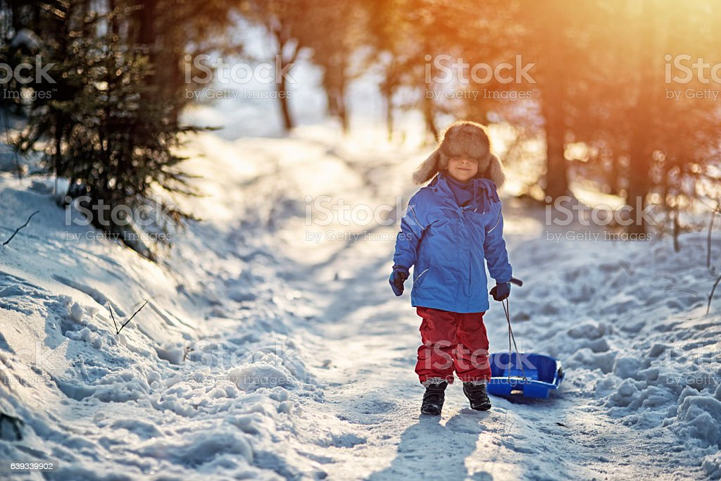 Little boy pulling his sled in winter forest. stock photo