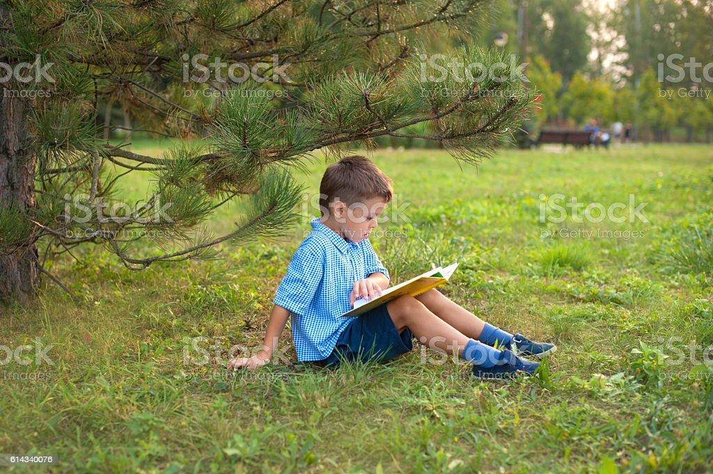 Little boy schoolboy in a park at sunset with a book stock photo