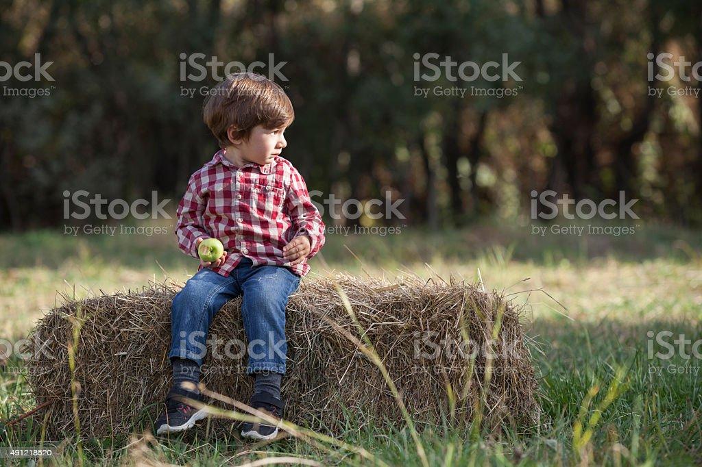 Little Boy Sitting On Hay Bale In The Field stock photo