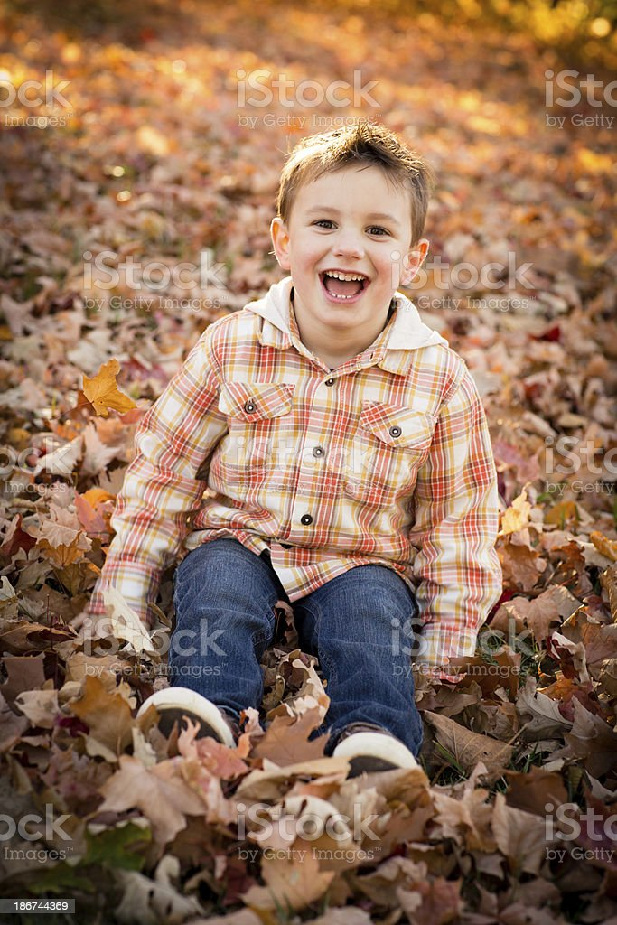 Little Boy Sitting Outside in Fall Leaves royalty-free stock photo