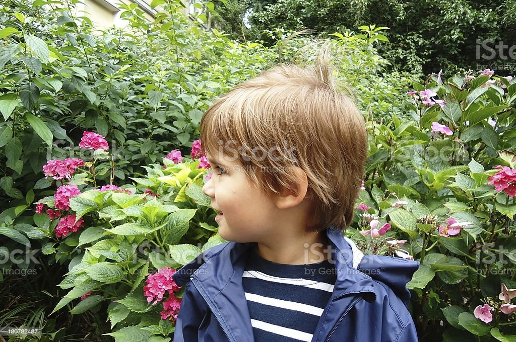 little boy smile stock photo
