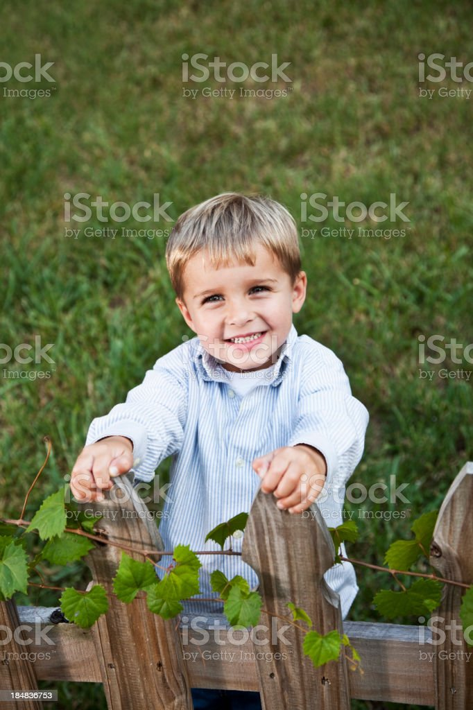 Little boy smiling in back yard stock photo