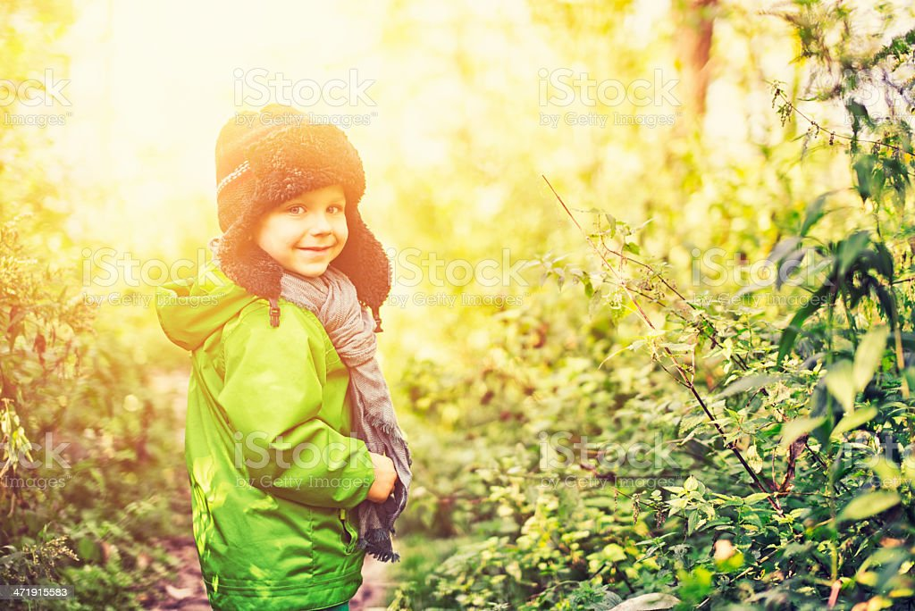 Little boy walking in forest royalty-free stock photo