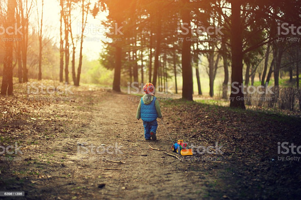 little boy walking in the forest stock photo