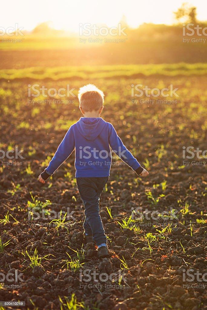 Little boy walking on the plowed field. stock photo