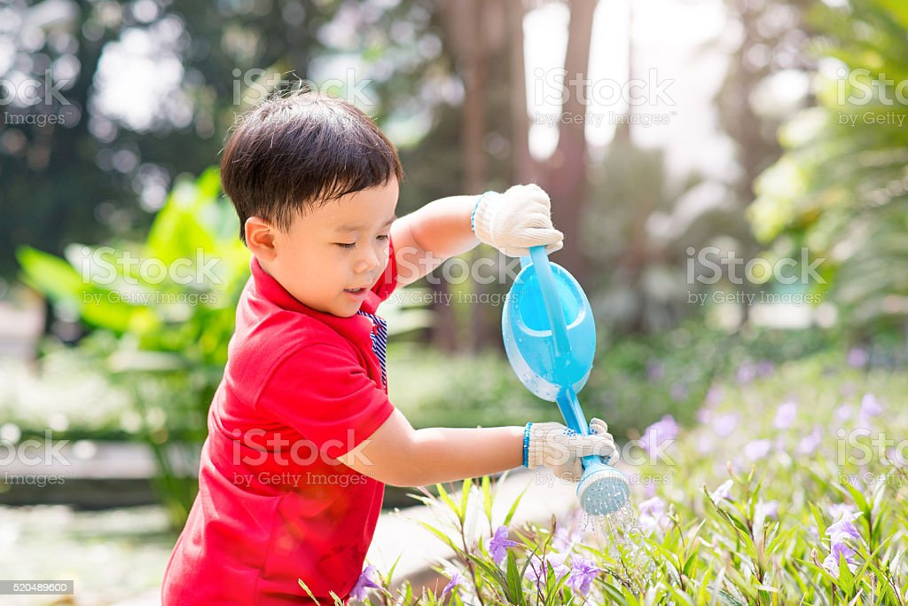 Little boy watering flowers stock photo