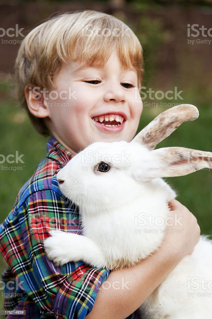 Little Boy with a Rabbit royalty-free stock photo