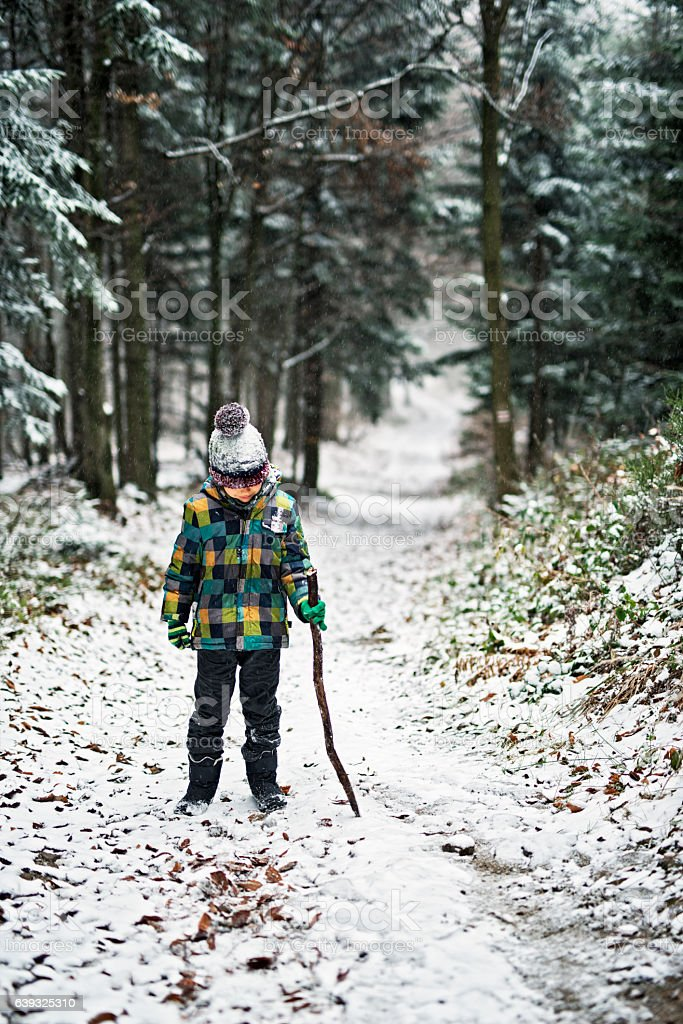 Little boy with a stick in snowy winter forest stock photo