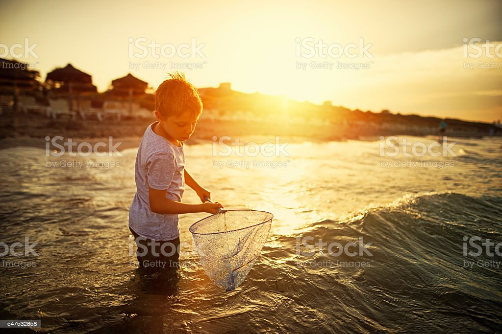 Little boy with fish net playing in sea on sunset stock photo