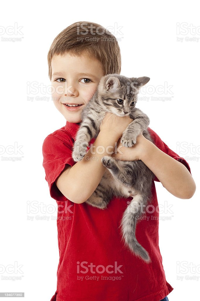 Little boy with gray kitty in hands stock photo