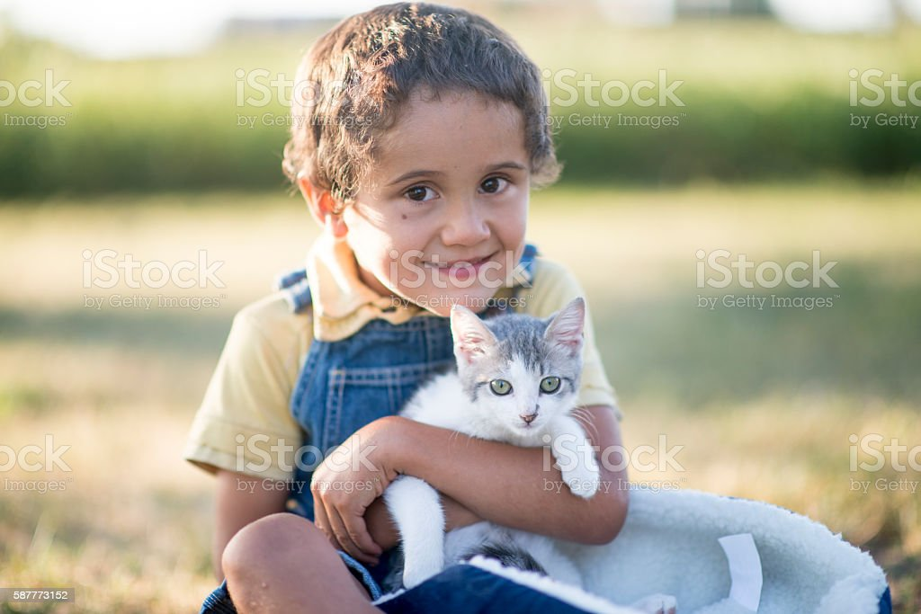 Little Boy with His Cat stock photo