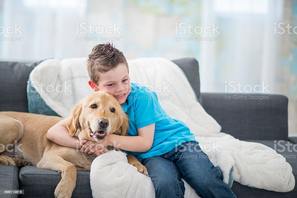 Little Boy with His Dog stock photo